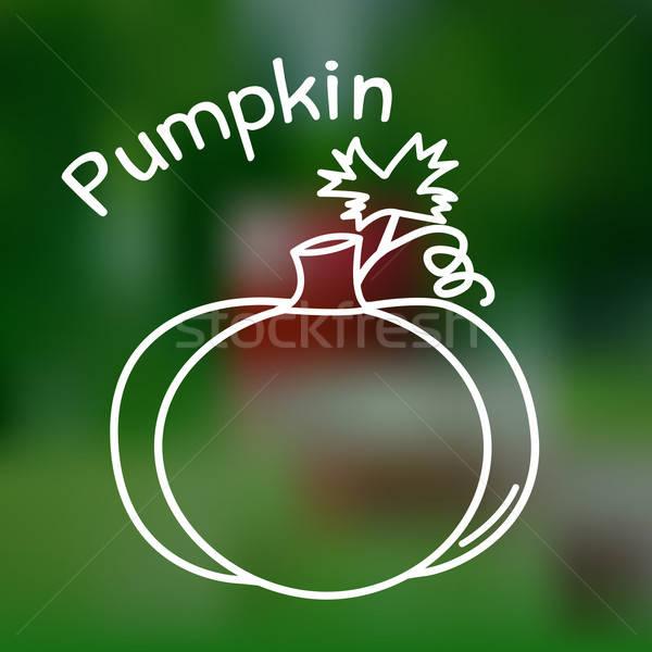 Stockfoto: Dun · lijn · pompoen · icon · witte · naam