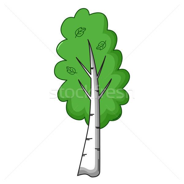 Huş ağacı ağaç ikon karikatür stil yalıtılmış Stok fotoğraf © Agatalina