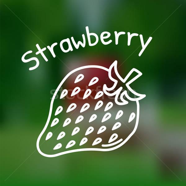 Thin line strawberry icon Stock photo © Agatalina
