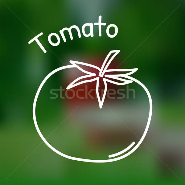 Stock photo: Thin line tomato icon