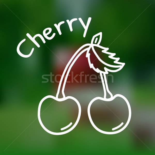 Thin line cherry icon Stock photo © Agatalina
