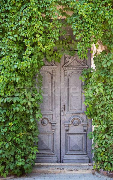 Gris vieux porte lierre bois mur Photo stock © Agatalina