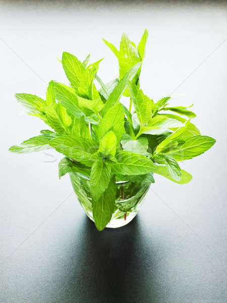 Mint in glass Stock photo © AGfoto