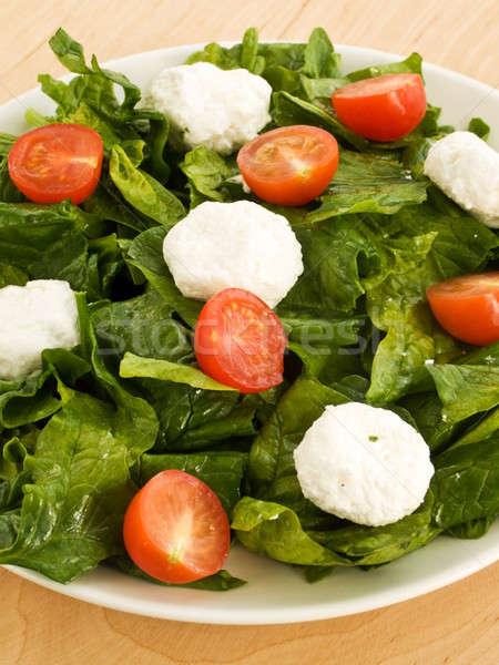 Saláta tányér spenót túró koktélparadicsom sekély Stock fotó © AGfoto