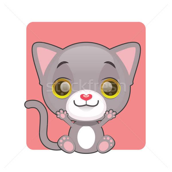 Cute graue Katze Sitzung Augen Hintergrund rot Stock foto © AgnesSz