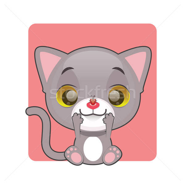 Cute gray cat looking at a ladybug on their nose Stock photo © AgnesSz