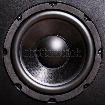 Bass speaker Stock photo © AGorohov