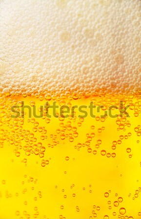 Beer background Stock photo © AGorohov
