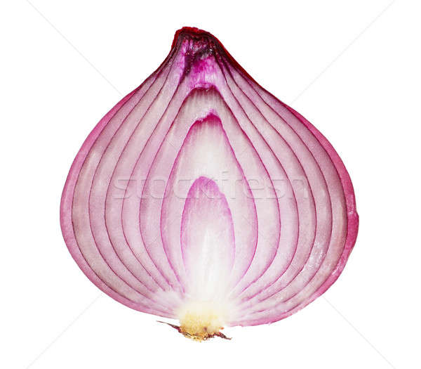Red onion Stock photo © AGorohov