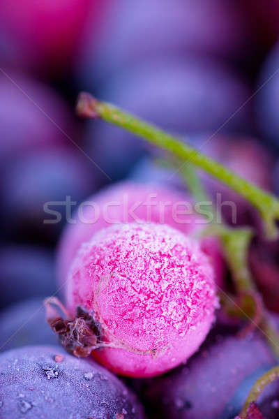 Frozen berries Stock photo © AGorohov