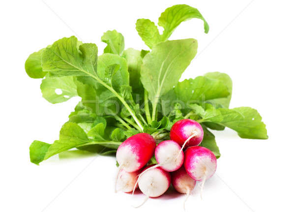 Radish Stock photo © AGorohov