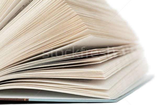 Nyitott könyv fehér papír háttér olvas főiskola Stock fotó © AGorohov