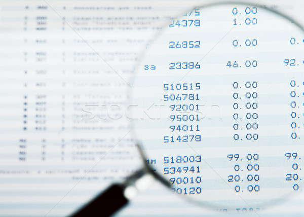 Audit Stock photo © AGorohov