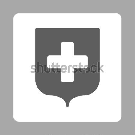 Health Care Presentation Flat Vector Icon Stock photo © ahasoft