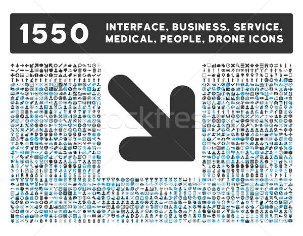 Arrow Down Right Icon and More Interface, Business, Tools, People, Medical, Awards Flat Glyph Icons Stock photo © ahasoft