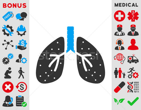 Lungs Icon Stock photo © ahasoft