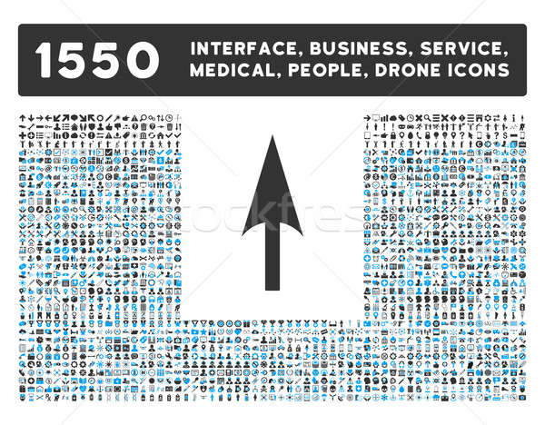 Arrow Axis Y Icon and More Interface, Business, Tools, People, Medical, Awards Flat Glyph Icons Stock photo © ahasoft