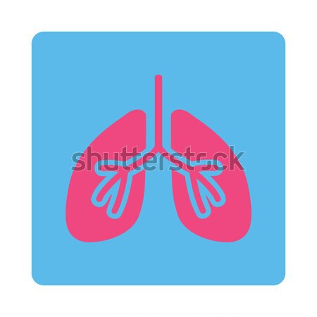 Lungs Flat Vector Icon Stock photo © ahasoft
