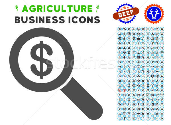 Financial Audit Loupe Icon with Agriculture Set Stock photo © ahasoft