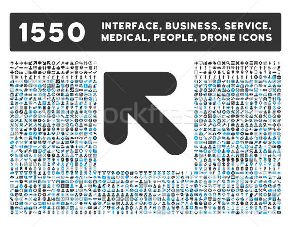 Arrow Up Left Icon and More Interface, Business, Tools, People, Medical, Awards Flat Glyph Icons Stock photo © ahasoft