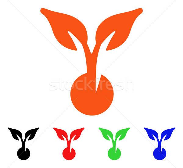 Tohum vektör ikon stil ikonik Stok fotoğraf © ahasoft