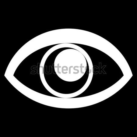 Eye Raster Icon Stock photo © ahasoft