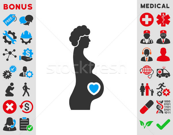 Pregnant Female Icon Stock photo © ahasoft