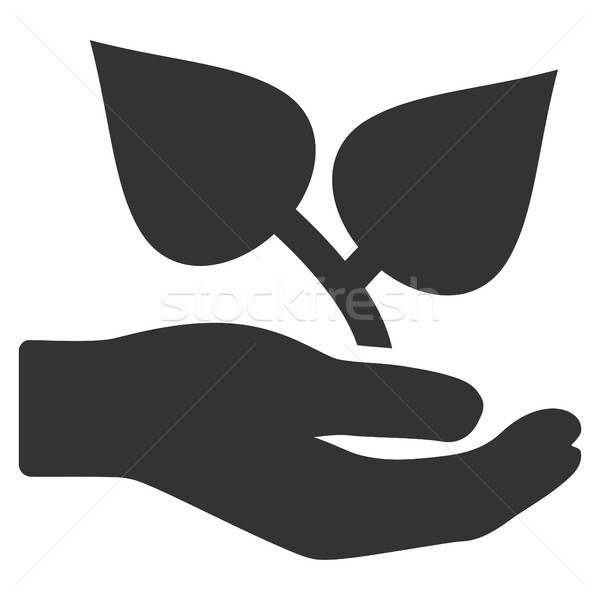 Flora Care Hand Flat Icon Stock photo © ahasoft