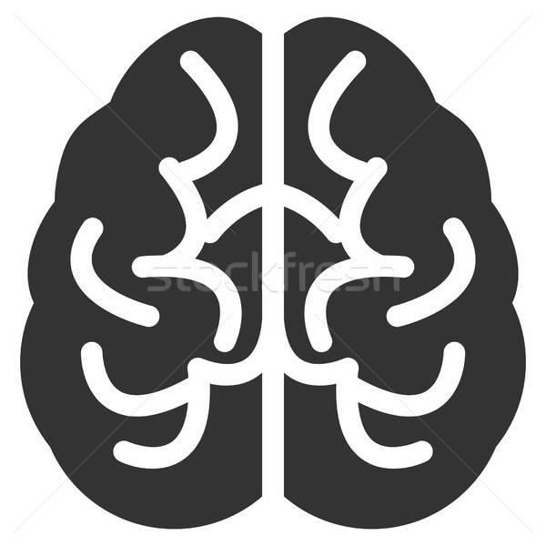 Brain Vector Icon Stock photo © ahasoft