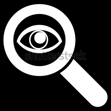 Eye Explore Raster Icon Stock photo © ahasoft