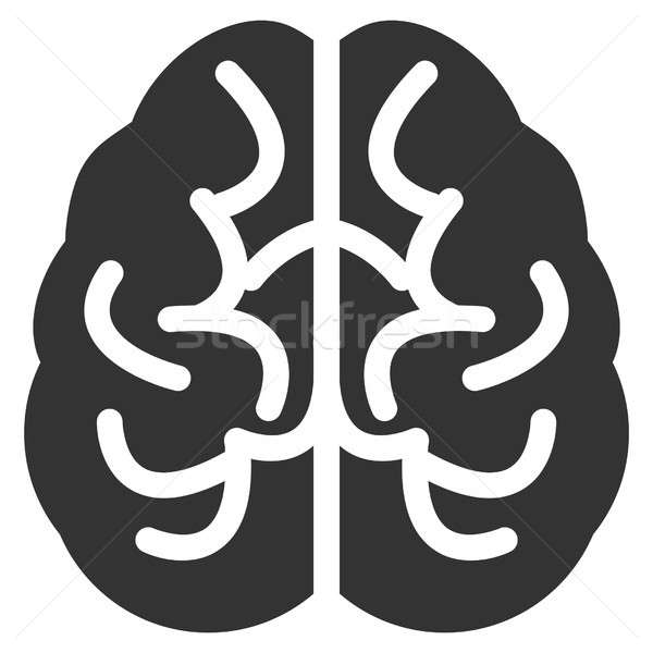 Brain Raster Icon Stock photo © ahasoft