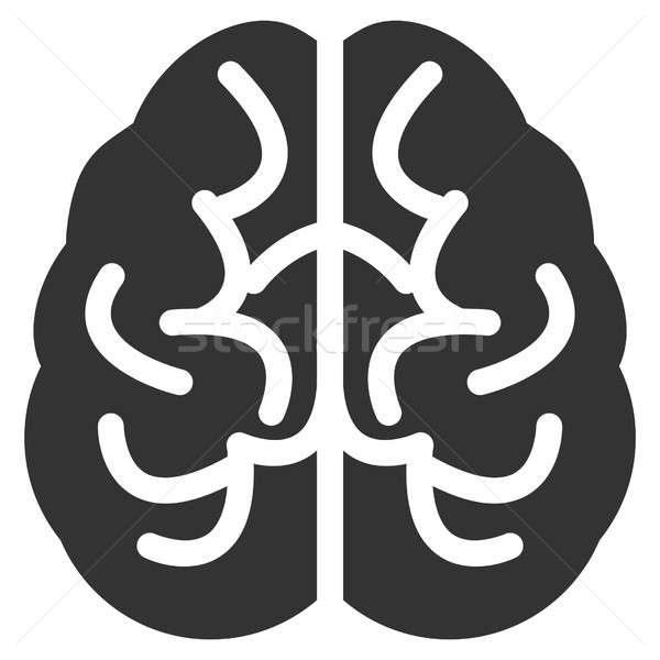 мозг икона серый интерфейс пиктограммы стиль Сток-фото © ahasoft