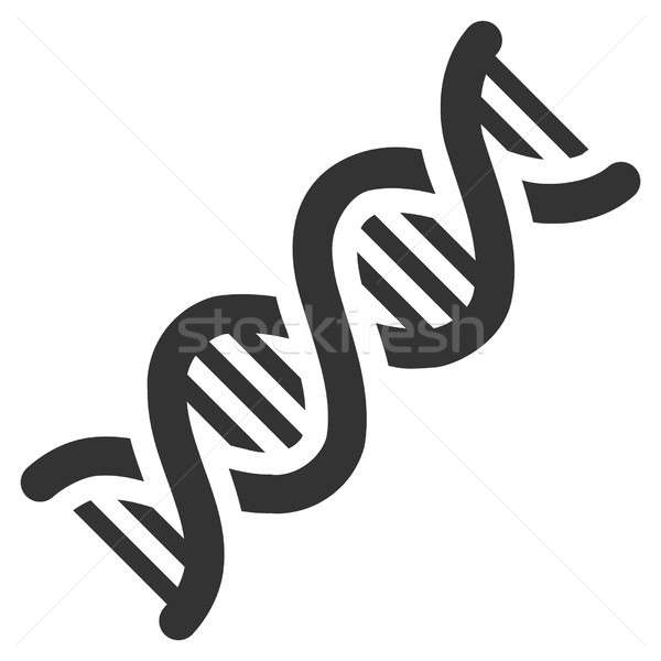 DNA Spiral Raster Icon Stock photo © ahasoft