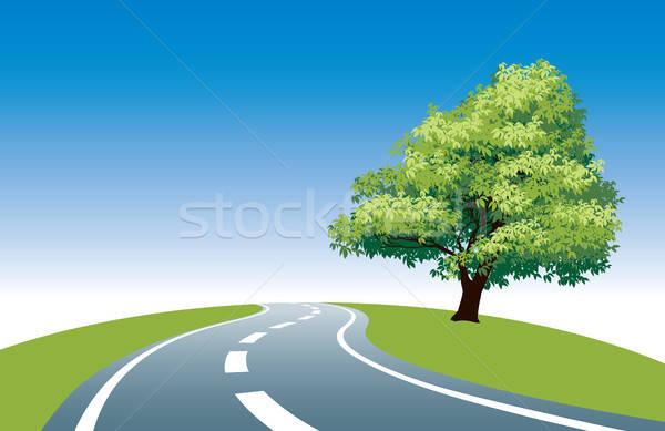 Beira da estrada árvore grande estrada blue sky primavera Foto stock © Aiel