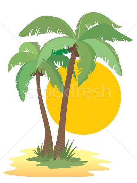 Palmiers cocotier arbres soleil coucher du soleil plage Photo stock © Aiel