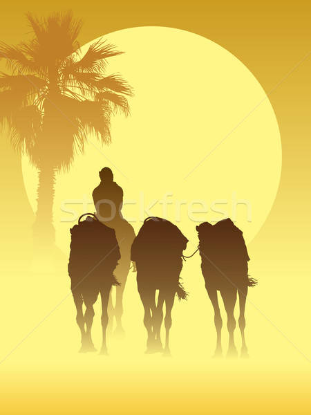 Stock photo: Camel caravan