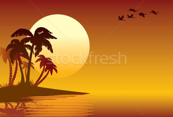 Tropical island Stock photo © Aiel