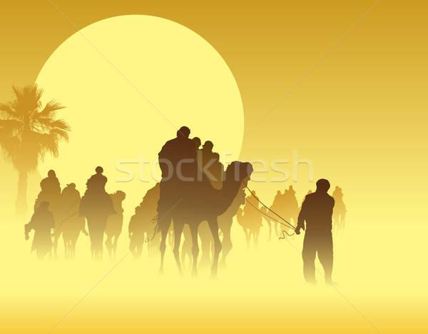 Stock photo: Camel caravan