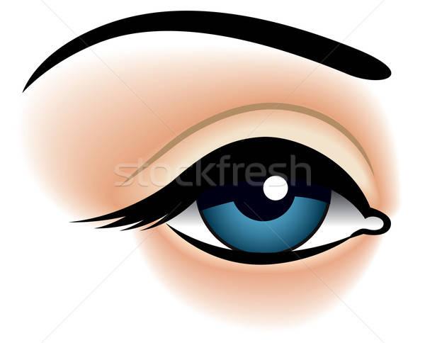 Blu occhi primo piano ragazza faccia Foto d'archivio © Aiel