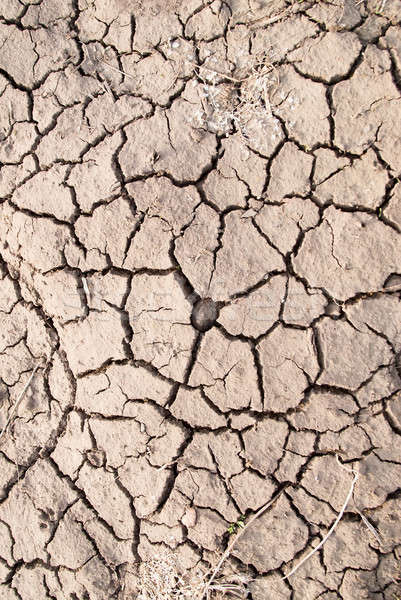 Dry land, dry scaly ground Stock photo © Aikon
