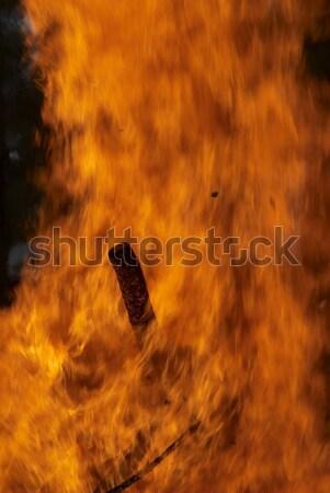 Incendi boschivi grande fuoco foresta legno Foto d'archivio © Aikon