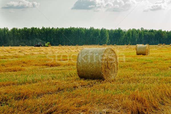 Széna traktor bála mezőgazdaság mező égbolt Stock fotó © Aikon