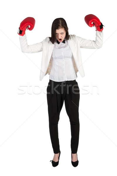 Boos zakenvrouw bokshandschoenen business dame Rood Stockfoto © Aikon