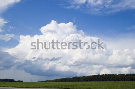 Cloudscape over forest Stock photo © Aikon