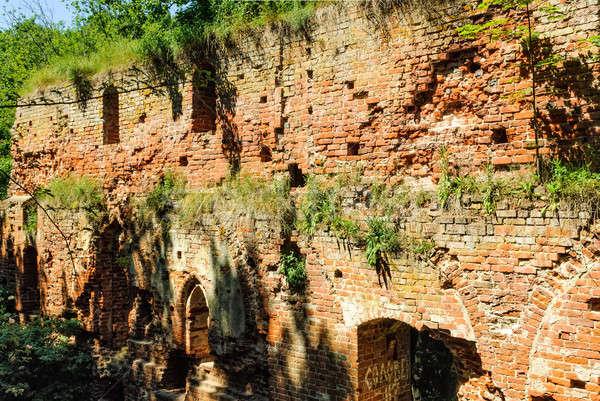 遺跡 古い 城 中世 地域 壁 ストックフォト © Aikon