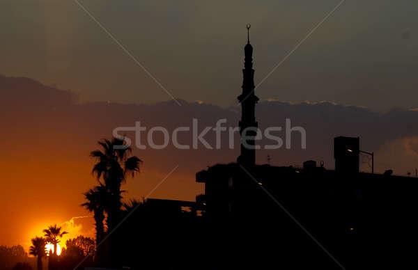 Zonsondergang Cairo minaret hemel boom gebouw Stockfoto © Aikon
