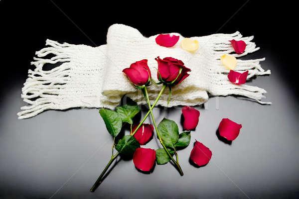 Twee rode rozen samen Rood bloemblaadjes zwarte Stockfoto © Ainat