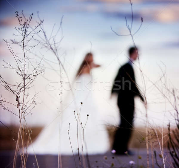 Bridal couple defocused foreground with nature. Stock photo © Ainat