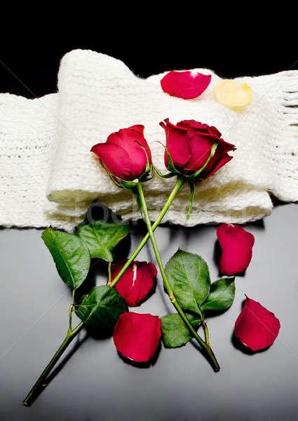 Dois rosas vermelhas juntos vermelho pétalas preto Foto stock © Ainat