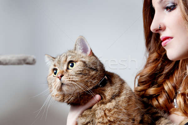 beautiful girl with her cat, neutral background Stock photo © Ainat
